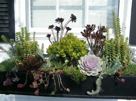 Blumenkasten Fensterbank Aussen by Die 25 Besten Ideen Zu Balkonk 228 Sten Bepflanzen Auf