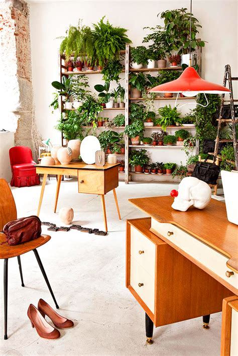 indoor garden ideas apartment 10 beautiful indoor garden for small apartment home