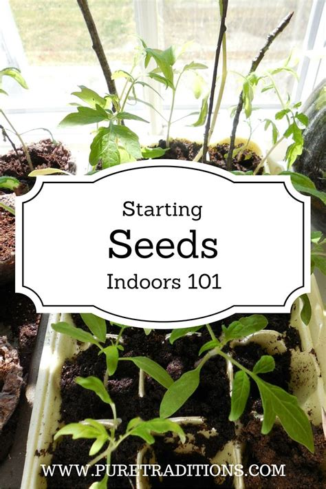 Starting A Vegetable Garden Indoors Seven Key Tips For Starting Indoor Vegetable Garden