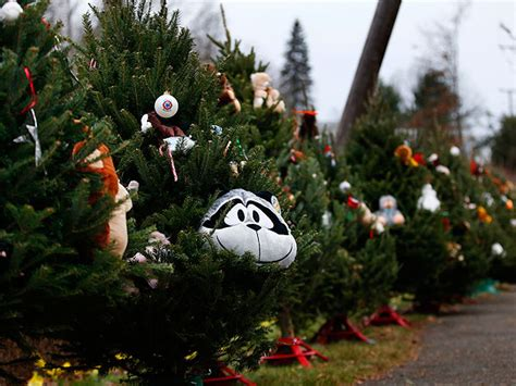 christmas trees in ct connecticut school shooting tree tribute