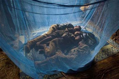 Mosquito Nets For Beds The New Drug War Against Malaria 187 The Movement 187 Blog