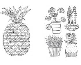 more mindfulness colouring all oliver bonas