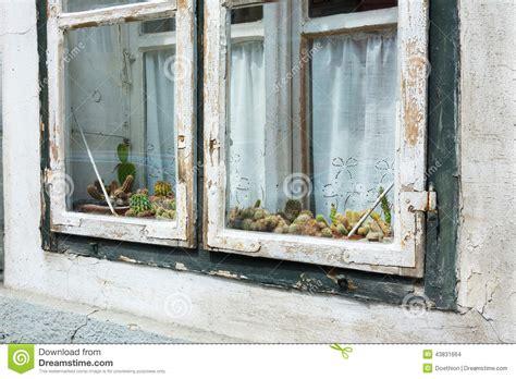 Window Sill Displays Cactii On Display On A Window Sill