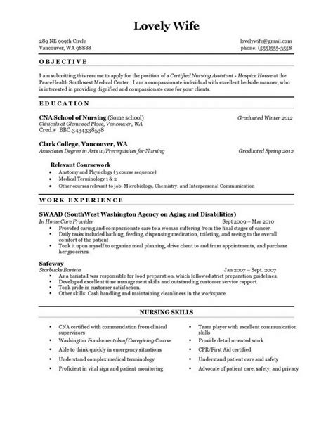 sle resume for nursing assistant resume ixiplay free resume sles