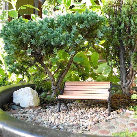 Houston Plant And Garden by Houston The Mini Garden Guru From Twogreenthumbs