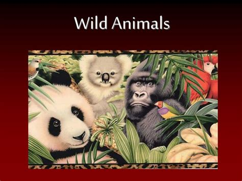 wild animals powerpoint    id