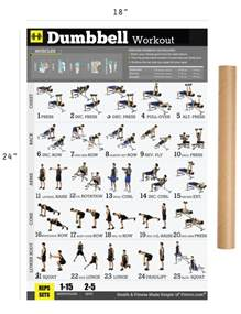 dumbbell workout exercise poster for 18 quot x24 quot laminated