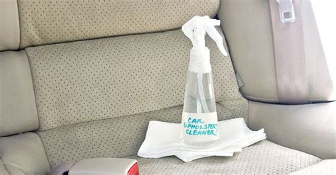 can you use carpet cleaner on upholstery 1000 ideas about upholstery cleaner on pinterest