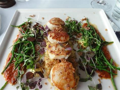 scallops course picture of oxo tower restaurant