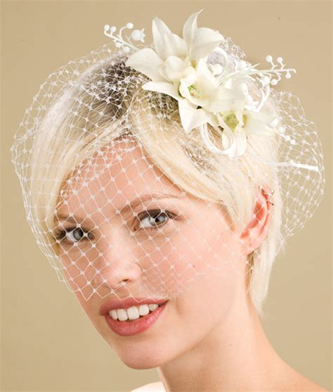 Wedding Hairstyles For Hair With Birdcage Veil by Wedding Hairstyles With Birdcage Veil Ipunya