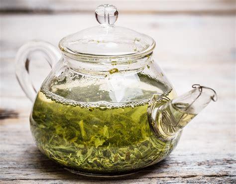Brewing Green Tea Leaves - beginner s guide to brewing tearivertea