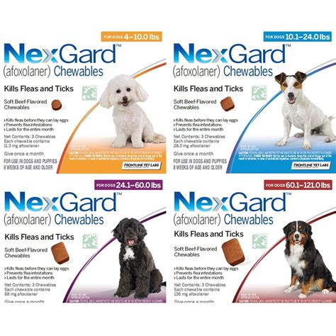 what is nexgard for dogs pet information archives animal hospital