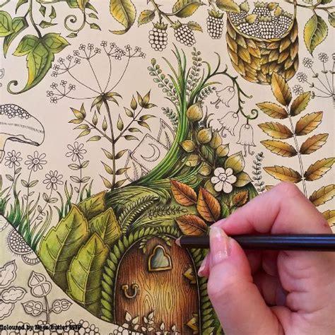 enchanted forest johanna basford images