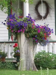 tree stump planter garden gardens