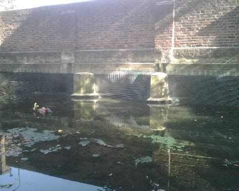 Wandle Messing by Wandle Bridge Project