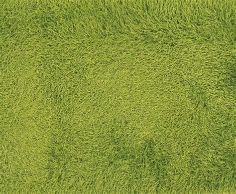 Green Shag Rug by Myriad Shades Of Green Shag Rugs