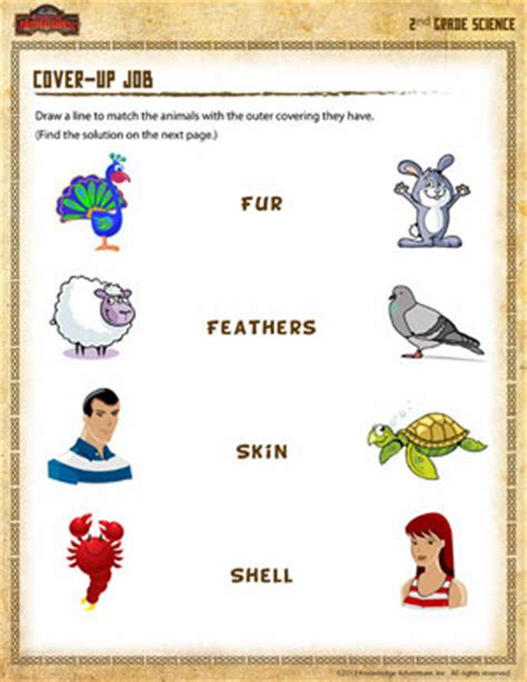 Worksheets For 2nd Grade Science by Cover Up Free 2nd Grade Science Worksheet School