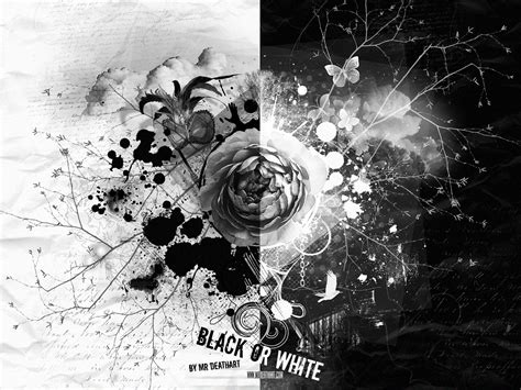 wallpapers for android black and white black and white rose android wallpaper