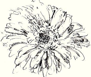 how to draw and sketch flowers in various mediums