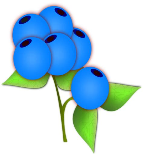 blueberry clipart blueberries clip at clker vector clip