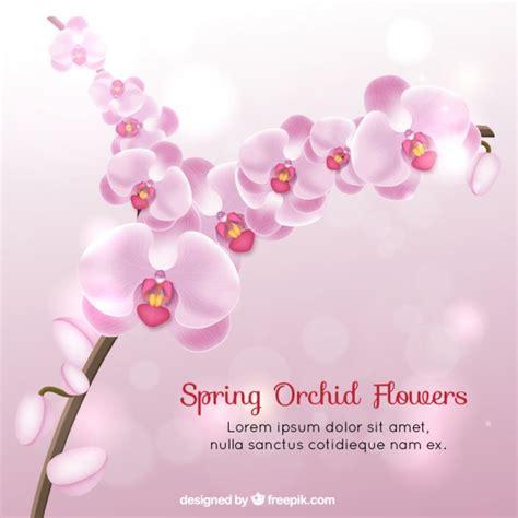 fiori realistici realistici fiori di primavera di orchidea scaricare