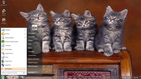 Rol Cat Motif 7 cats 4 windows 7 theme by windowsthemes on deviantart