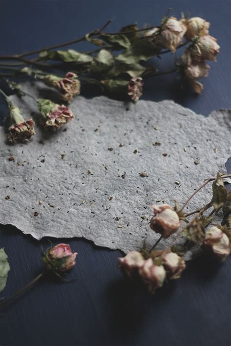 How To Make Plantable Seed Paper - how to make plantable seed paper na kartki wycinanki