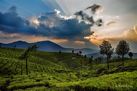 Plantation Home Designs by Dramatic Sky Over Munnar Tea Plantation Photos By Ravi