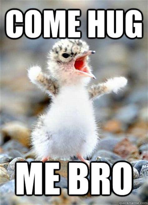 Hug Meme - come hug me bro hug me quickmeme