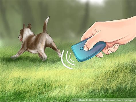 keeping your dog away from your tree 3 ways to keep stray dogs away from backyard wikihow