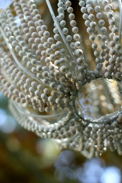 Diy Pearl Chandelier Make A Beaded Chandelier 187 Dollar Store Crafts