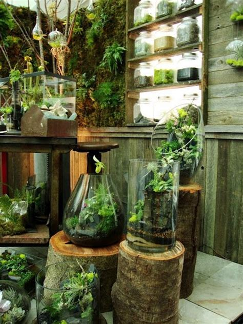 indoor garden ideas 6009 44 awesome indoor garden and planters ideas butterbin