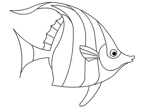 angelfish outline pictures to pin on pinterest pinsdaddy