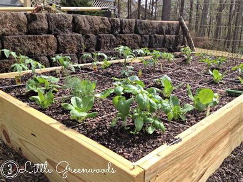 Build Your Own Vegetable Garden Box Build Your Own Diy Container Garden Hometalk
