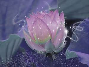 magical lotus flower katitijani deviantart