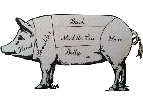 pig butcher diagram pigging out what radically unkosher foodies like