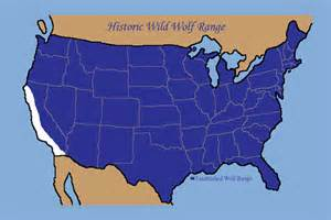 map of wolves in america graywolfconservation wolf history in u s