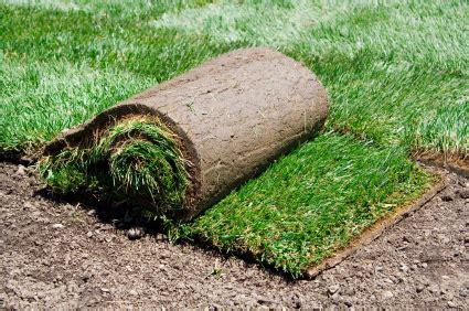 tappeto co da calcio gardening a lawn with turf garden tip compare