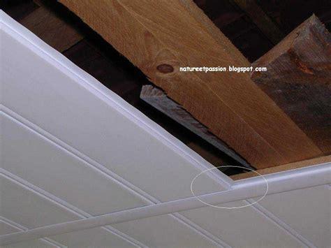 Lambri Pvc Plafond by Comment Poser Un Lambris Pvc Au Plafond Plancher Bois
