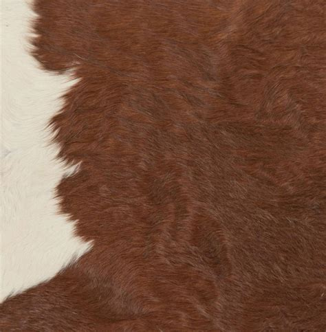 Brown Hide Rug Hereford Brown And White Hair On Hide Rug