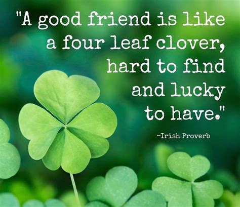 4year frndship qoutes 20 inspirational quotes to brighten your day friendship inspirational and four leaf clover