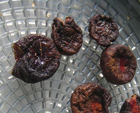 comment cuisiner les figues s 233 cher figue au d 233 shydrateur alimentaire