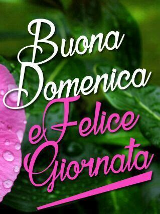 52 best images about buona domenica on pinterest | happy