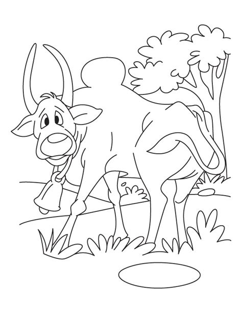 Oxen And Horse Coloring Pages Coloring Pages Ox Coloring Page