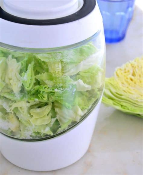 Sauerkraut Detox by How To Detox Your Personal Care And Products The