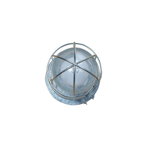 canarm ceiling wall outdoor indoor barn light with cage