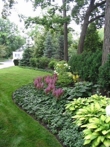 Landscape Ideas Zone 6 25 Best Ideas About Arborvitae Landscaping On