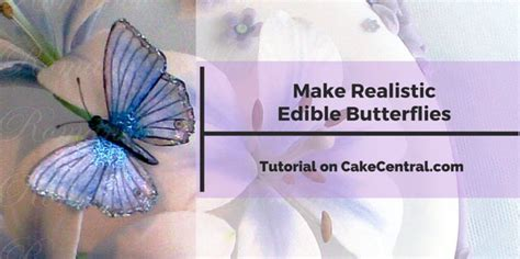 wafer paper butterfly tutorial 335 best ideas about cake tips and how to s on pinterest