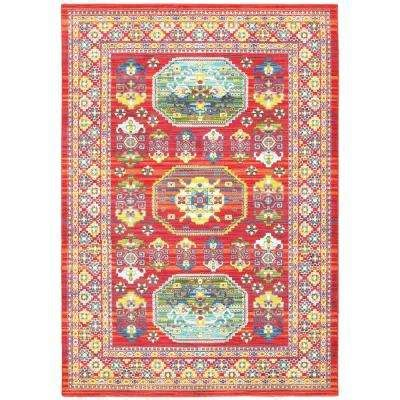 Home Decorators 5070 home decorators collection area rugs rugs the
