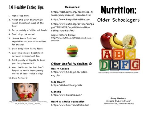 nutrition brochure template nutrition phlet